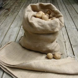 Image for Hessian Sacks
