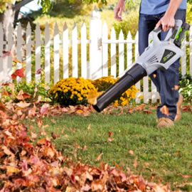 Image for Leaf Blower