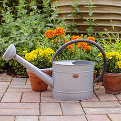 Image for Watering Cans