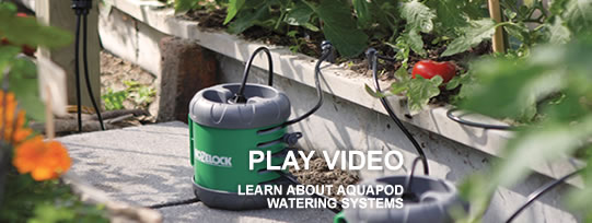 Hozelock Aqua Pod Watering Systems