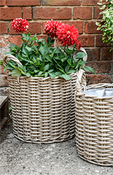 Small Image of Set of 2 Polyrattan Planters Natural
