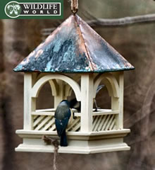 Image of Bempton Hanging Bird Feed Table - BEBT