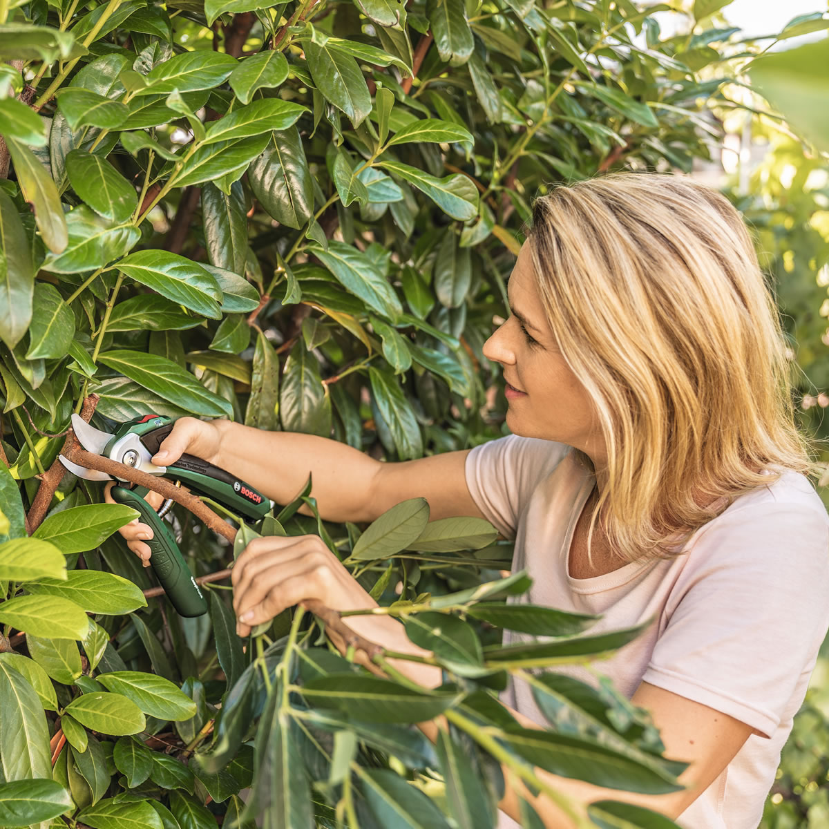 Extra image of Bosch EasyPrune Electric Secateurs