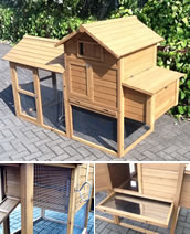 Superior Litchfield Raised Chicken Coop with Enclosed Run