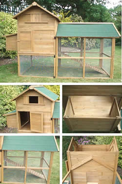 Basic Raised Chicken Coop With Nest Box