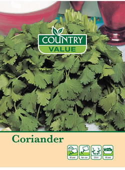 Image of Country Value Coriander Seeds
