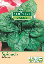 Small Image of Country Value Spinach America Seeds