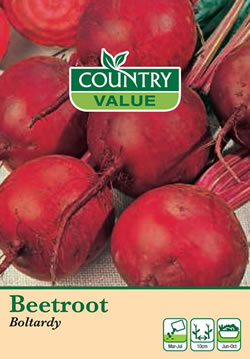 Image of Country Value Boltardy Beetroot Seeds