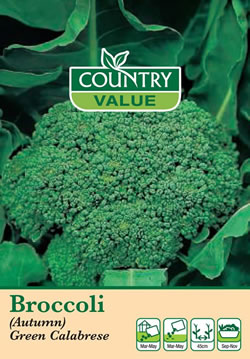 Image of Country Value Green Sprouting Calabrese Seeds