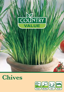 Image of Country Value Chives Seeds