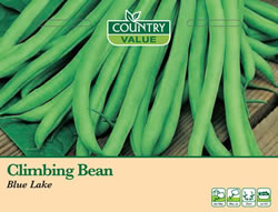 Image of Country Value Blue Lake Climbing Bean Seeds