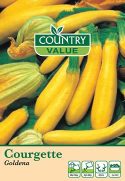 Image of Country Value Goldena Courgette Seeds