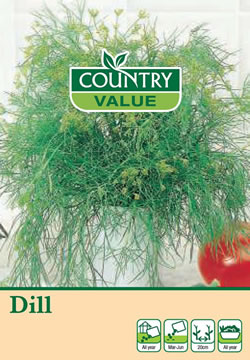 Image of Country Value Dill Seeds