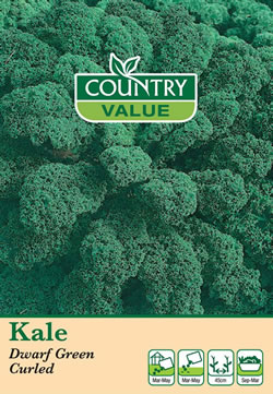 Image of Country Value Dwarf Green Curled Kale Seeds