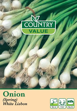 Image of Country Value White Lisbon Spring Onion Seeds