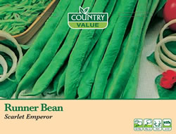 Image of Country Value Scarlet Emperor Runner Bean Seeds