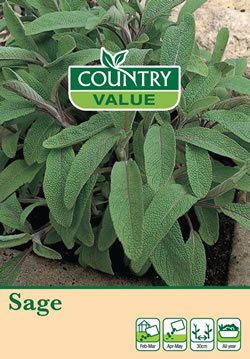 Image of Country Value Sage Seeds