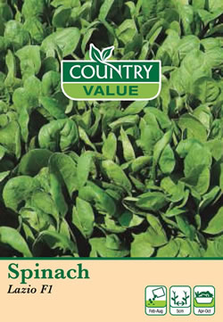 Image of Country Value Spinach Lazio F1 Seeds
