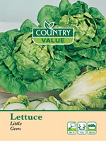 Small Image of Country Value Little Gem Lettuce Seeds