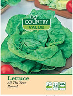 Country Value All The Year Round Lettuce Seeds