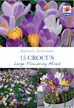 Image of Crocus Large Flowering Mixed Lifestyle Bulbs