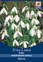 Snowdrops Single Xtra Large Bulbs