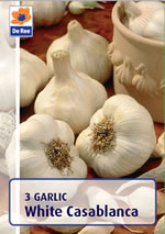 Garlic Bulbs - White Casablanca (Allium Sativum) - 3 Bulbs