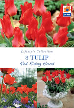 Tulip Red Riding Hood Lifestyle Collection Bulbs