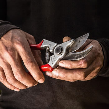 Extra image of Felco Secateurs 4 (Standard) - L125