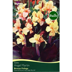 Small Image of Angel Martin Canna Bulb