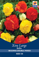 Begonia Double Mixed Xtra Large Bulbs