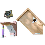 Small Image of Side View Bird Nesting Box and Feeder with Ultra Hi Res Colour Camera