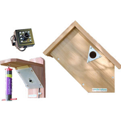 Image of Side View Bird Nesting Box and Feeder with Ultra Hi Res Colour Camera