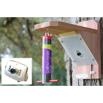 Small Image of Bird Feeder with High Resolution Colour Camera