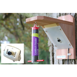 Image of Bird Feeder with High Resolution Colour Camera