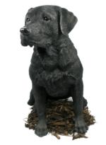 Image Of Black Labrador   Dog Resin Garden Ornament