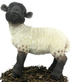 Image of Black and White Lamb - Resin Garden Ornament