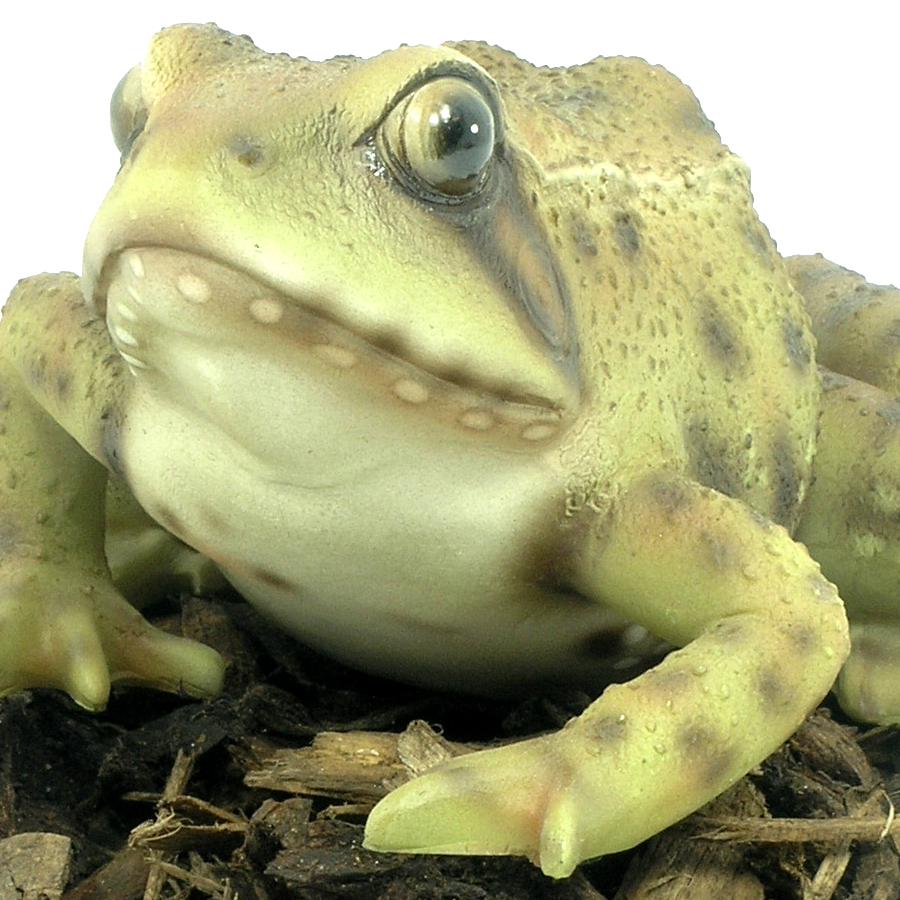 Beau Great Extra Image Of Frog Resin Garden Ornament .