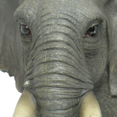 Extra image of Large Elephant - Resin Garden Ornament