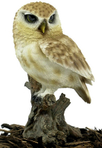 Image of Little Owl - Resin Garden Ornament