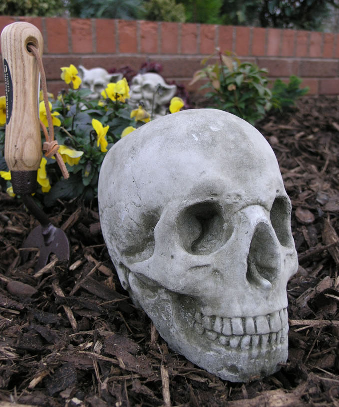Small Image Of Skull Stone Garden Ornament Statue   GG11