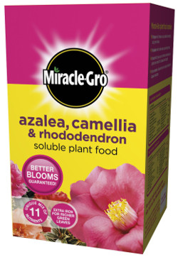 Image of Miracle Gro Azalea, Camellia & Rhododendron Soluble Plant Food - 1kg