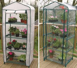 [Image: clear-plastic-mini-greenhouse.jpg]
