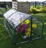 Mini Cold Frame Greenhouse