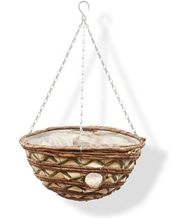 Image of Fan Leaf Bizzie Lizzie Hanging Basket - 35cm