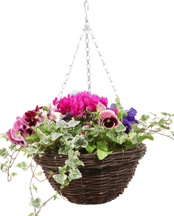 Image of Rustic Rattan Natural Hanging Basket - 30cm