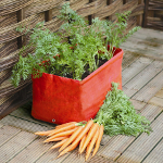 Small Image of Haxnicks Carrot Patio Planter - Pack of 2
