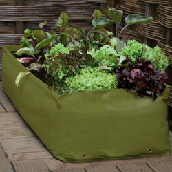 Small Image of Haxnicks Multi Purpose Growbag Planter
