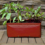 Small Image of Haxnicks Short Balcony Patio Planter - Pack of Two