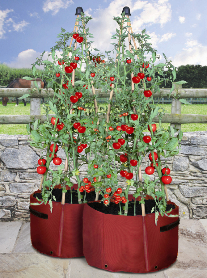 Haxnicks Tomato Patio Planter Pack Of 2 163 13 95